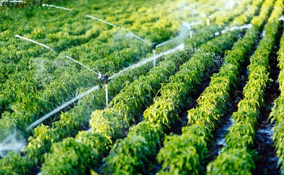 Irrigation Le Maroc Tient Son Remig Ahmed El Bouari Aux
